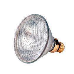 Lemputė Philips 175W