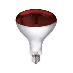 Lemputė Economy 250 W