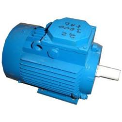El. trifazis variklis 2,2 kW / 1000 APS / PAD